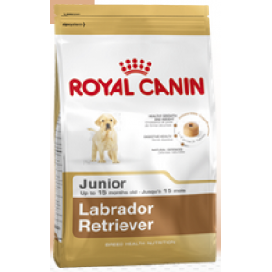 Royal Canin Labrador Retriever 33 Junior (Лабрадор Ретривер Юниор)